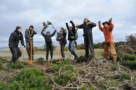 volunteers_james_island_invasive_species_photo_by_NCC_thumb